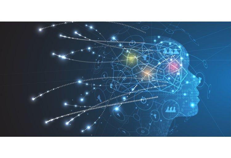 Neurociencia para entender al consumidor